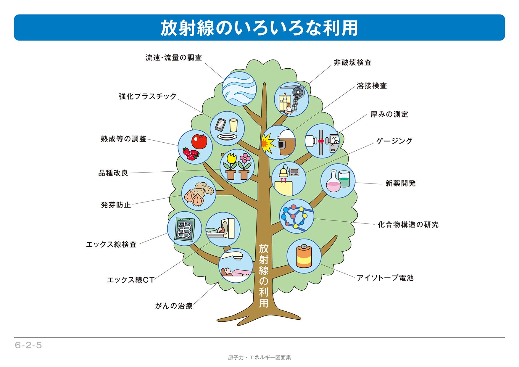 放射線の利用 - 日常生活と放射...