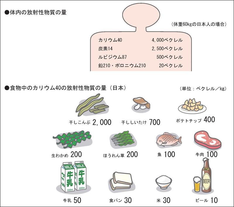 photo_sasaki2
